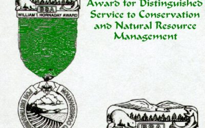 Merit Badge Cross-reference Guide